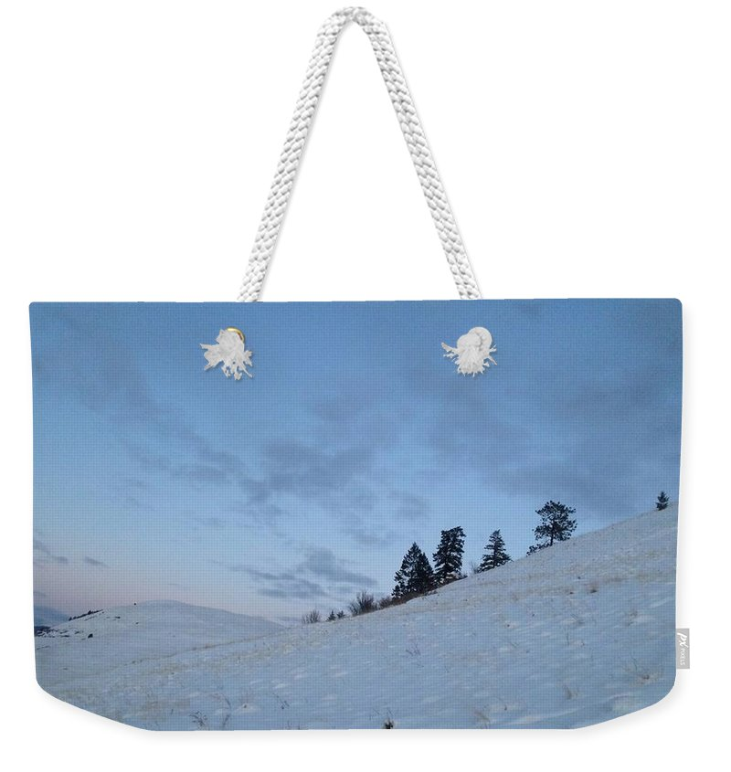 Weekender Tote Bag featuring the photograph Wild Majesty by Dan Hassett