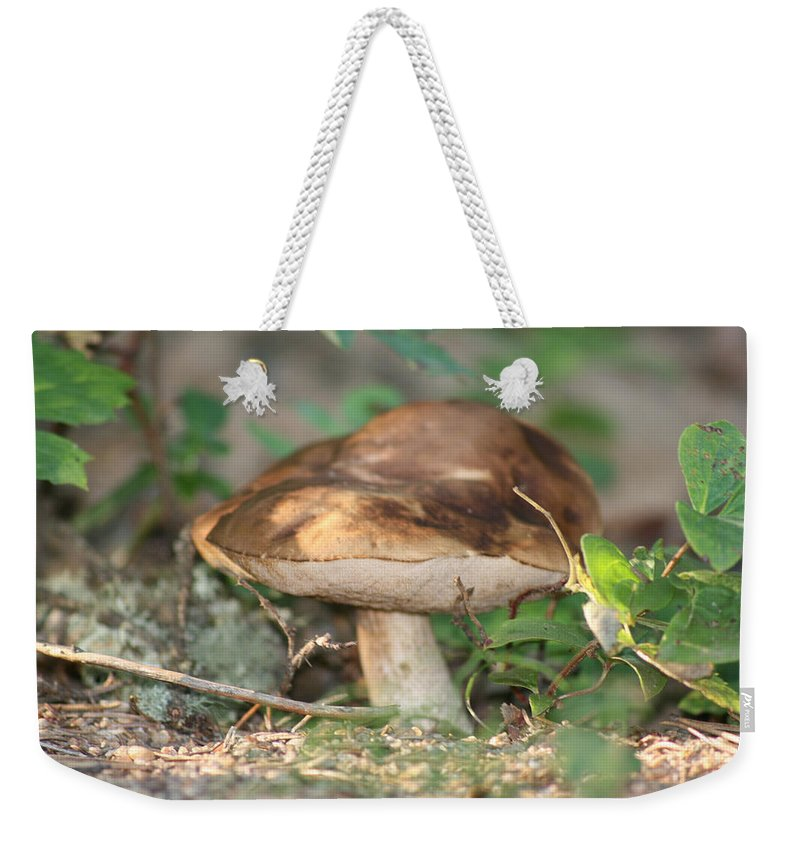 Mushroom Wild Plants Nature Forest Earth Natural Weekender Tote Bag featuring the photograph Wild Mushroom by Andrea Lawrence