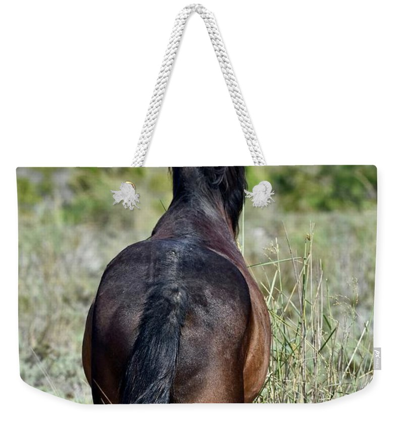Wild Mustang Weekender Tote Bag featuring the photograph Wild Mustang by Jeramey Lende