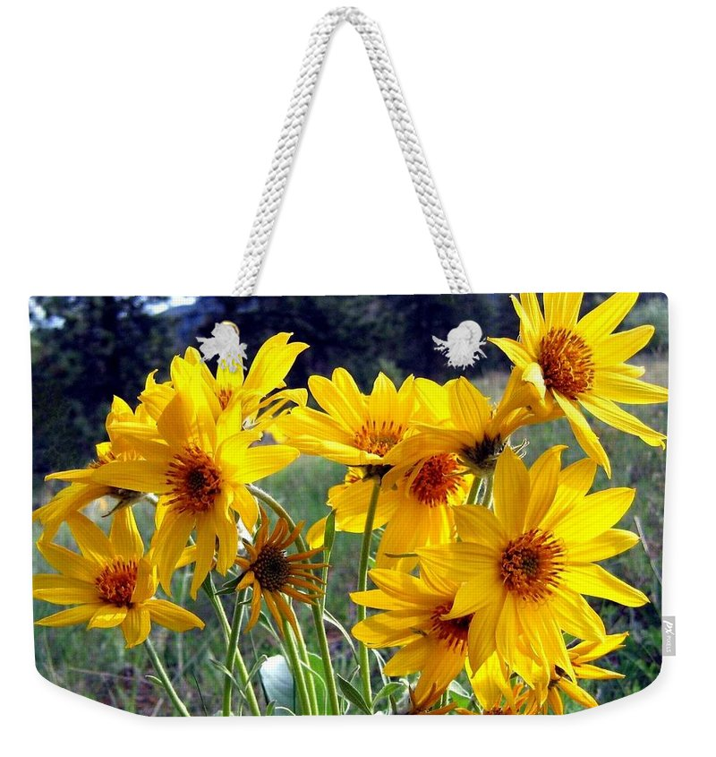 Sunflowers Weekender Tote Bag featuring the photograph Wild Okanagan Sunflowers by Will Borden