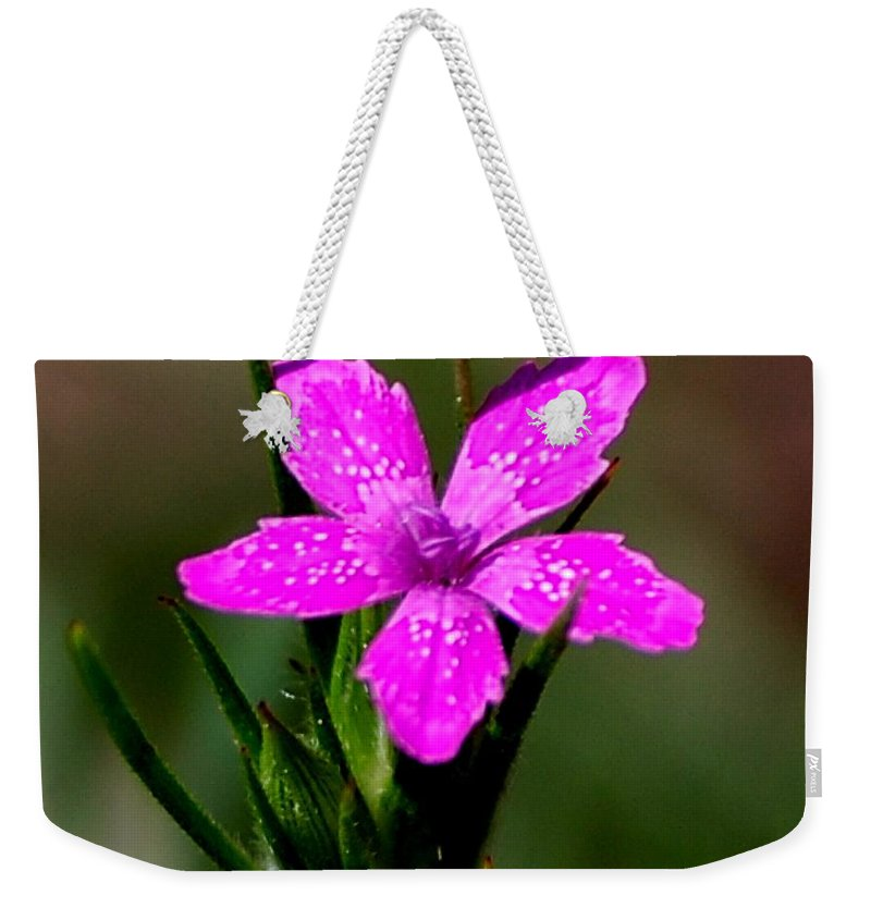Digital Photo Weekender Tote Bag featuring the photograph Wild Pink by David Lane