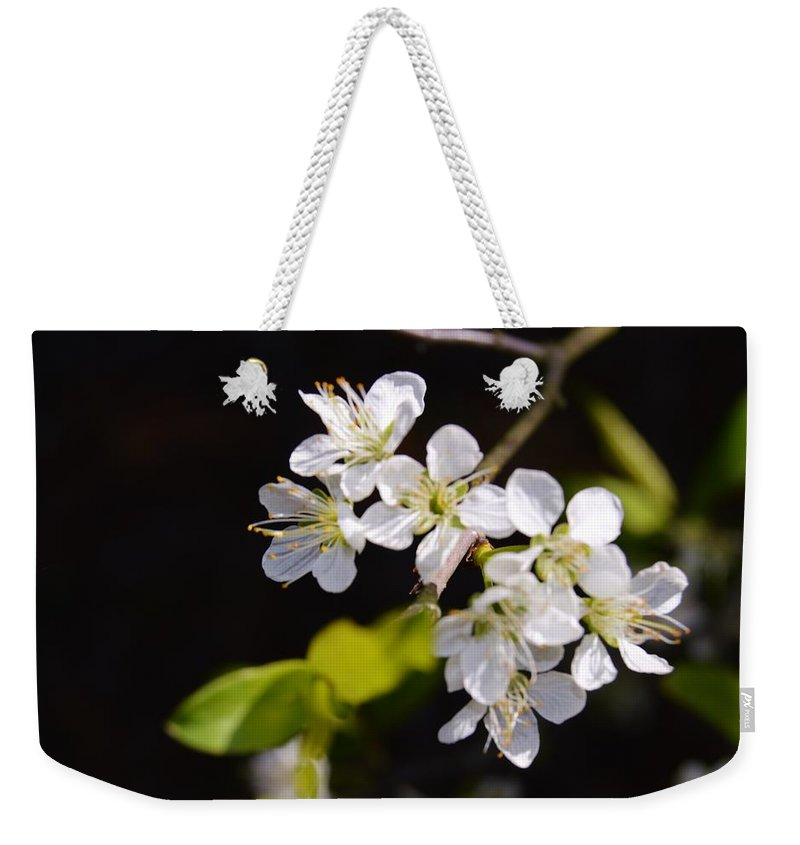 Wild Plum Blossom Weekender Tote Bag featuring the photograph Wild Plum Blossom by Warren Thompson