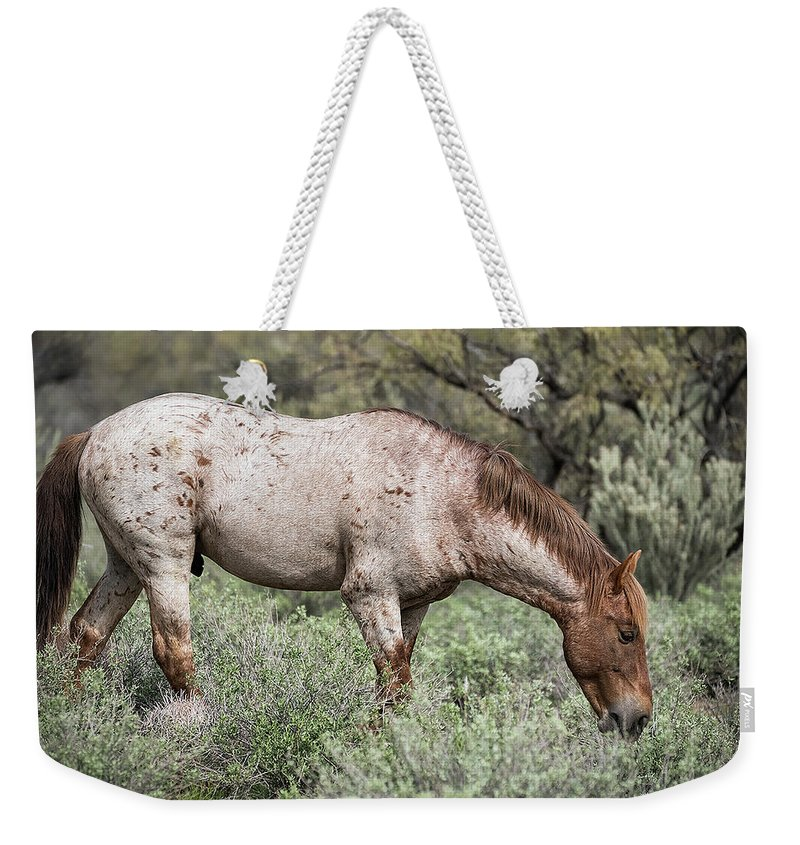 Wild Horses Weekender Tote Bag featuring the photograph Wild Roan Stallion by Saija Lehtonen
