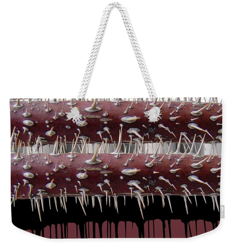 Wild Rose Weekender Tote Bag featuring the digital art Wild Rose by Ron Bissett