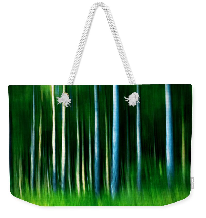 Abstract Weekender Tote Bag featuring the photograph Wild Stripes by Dorit Fuhg
