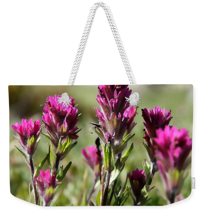 Wild Treasure Weekender Tote Bag featuring the photograph Wild Treasure by Chris Brannen