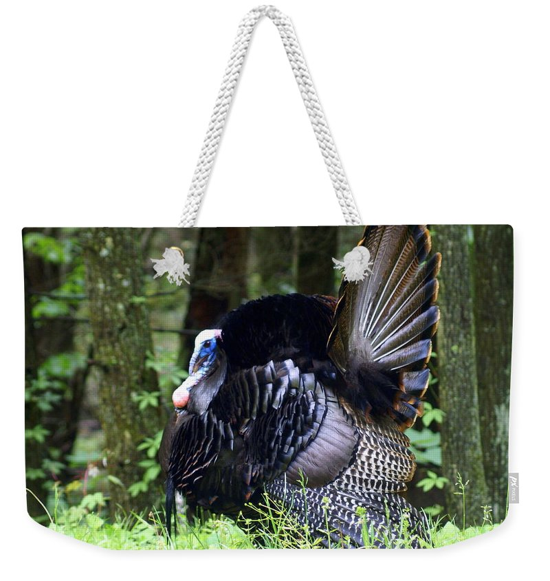 Wild Turkey Weekender Tote Bag featuring the photograph Wild Turkey 1 by Marty Koch
