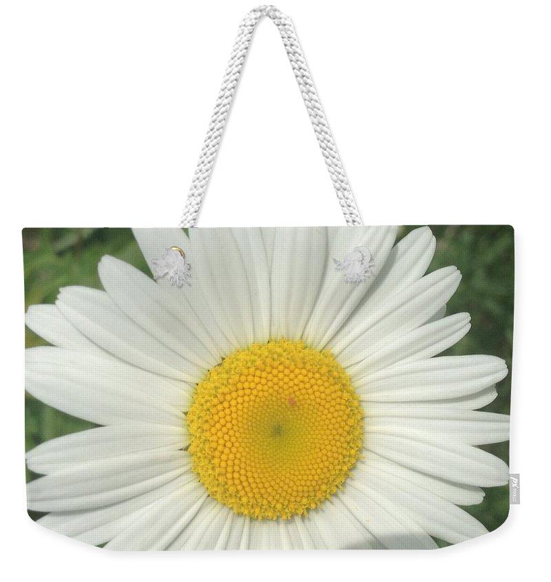 Wild White Daisy Weekender Tote Bag featuring the photograph Wilddaisy by Francois Cusson