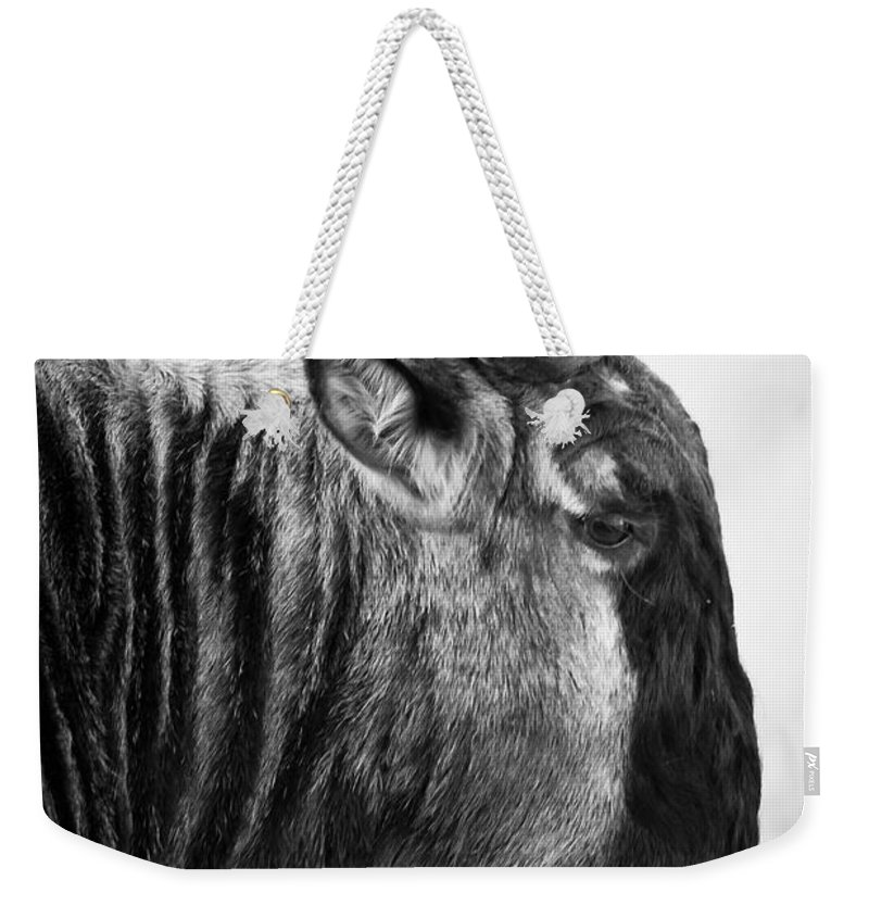 3scape Photos Weekender Tote Bag featuring the photograph Wildebeest by Adam Romanowicz