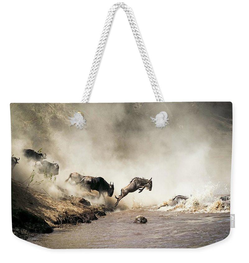 African Wildlife Weekender Tote Bags
