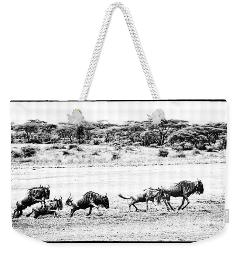 Wildebeests Weekender Tote Bag featuring the photograph Wildebeest On The Move by PiperAnne Worcester