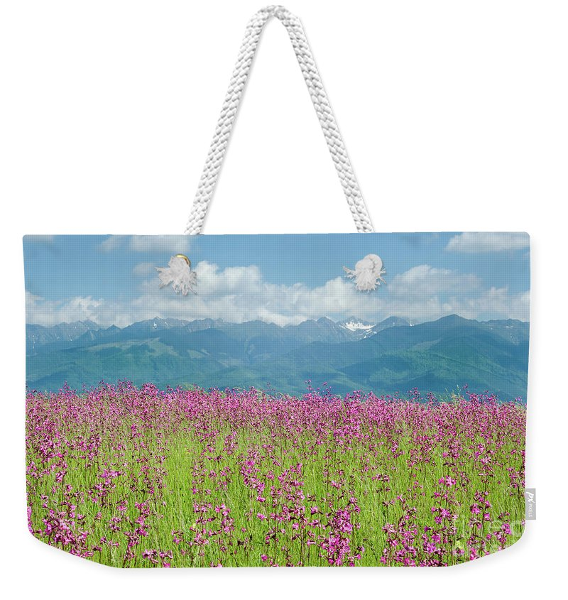 Farm Weekender Tote Bag featuring the photograph Wildflower Meadows And The Carpathian Mountains, Romania by Perry Rodriguez