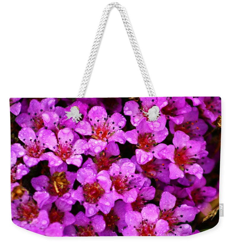 Wild Flowers Weekender Tote Bag featuring the photograph Wildflowers by Anthony Jones