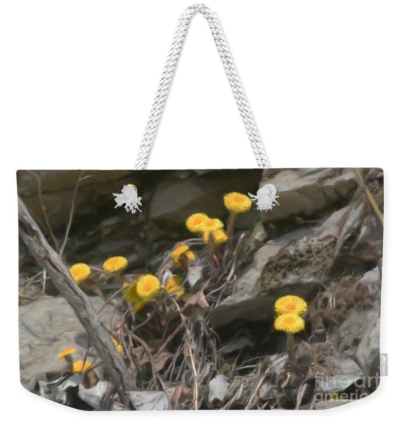 Flower Weekender Tote Bag featuring the painting Wildflowers In Rocks by Smilin Eyes Treasures