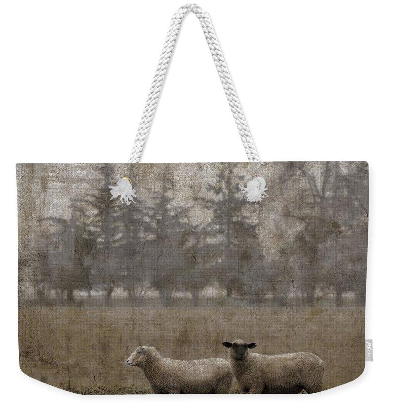 Sheep Weekender Tote Bags