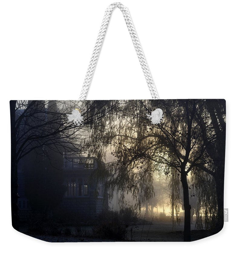 Fog Weekender Tote Bag featuring the photograph Willow In Fog by Tim Nyberg