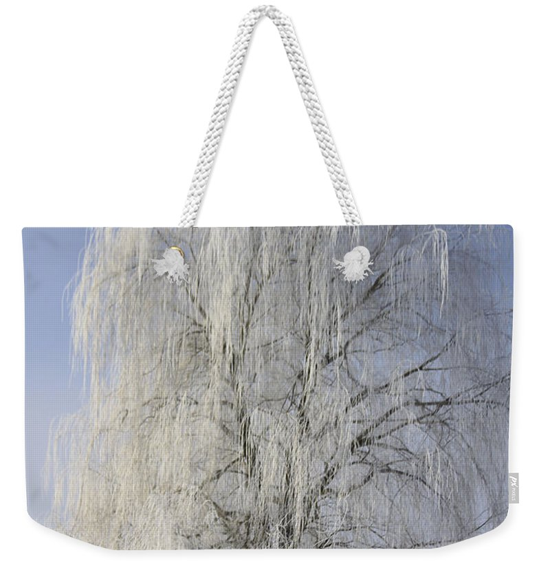 Willow Weekender Tote Bag featuring the photograph Willow In Ice by Deborah Benoit
