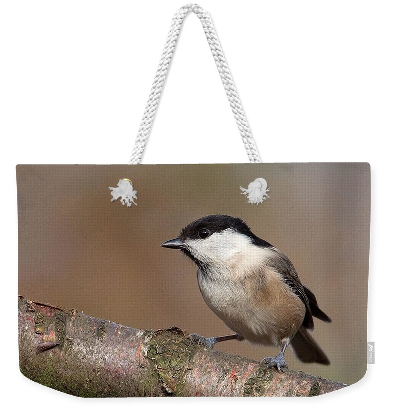 Willow Tit Weekender Tote Bag featuring the photograph Willow Tit by Bob Kemp