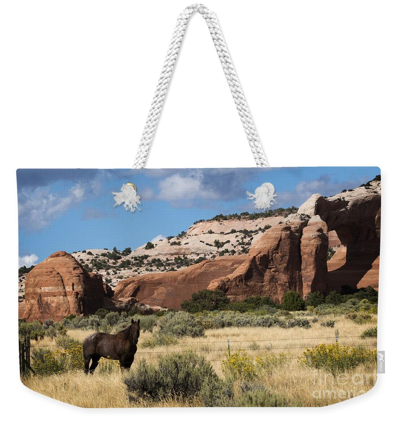 Wilson Arch Weekender Tote Bag featuring the photograph Wilson Arch by Priscilla Burgers