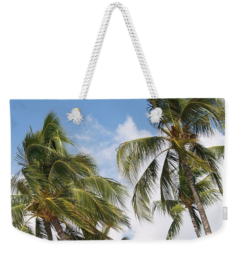 Scenic Weekender Tote Bag featuring the photograph Wind Though The Trees by Athala Carole Bruckner