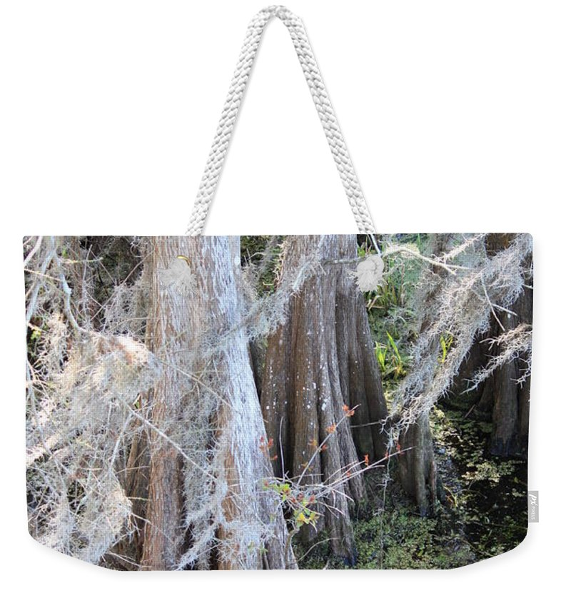 Wind Through Cypresses Weekender Tote Bag featuring the photograph Wind Through The Cypress Trees by Carol Groenen