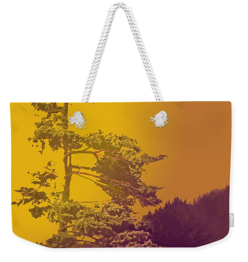 Pine Weekender Tote Bag featuring the photograph Windblown At Twilight by Ian MacDonald