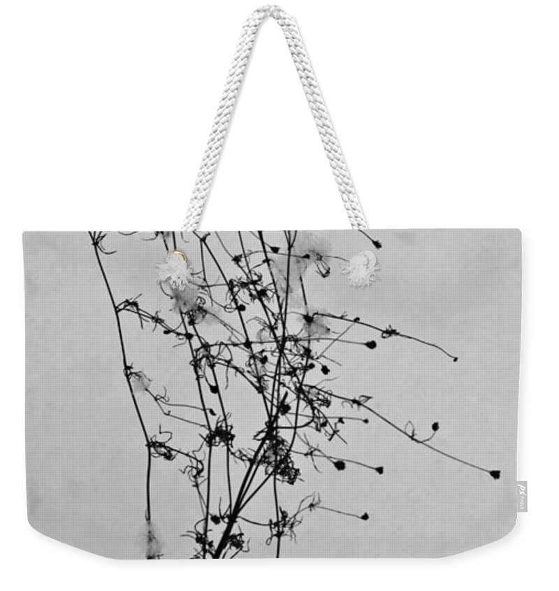 Windblown Weekender Tote Bag featuring the photograph Windblown In The Snow by Douglas Barnett