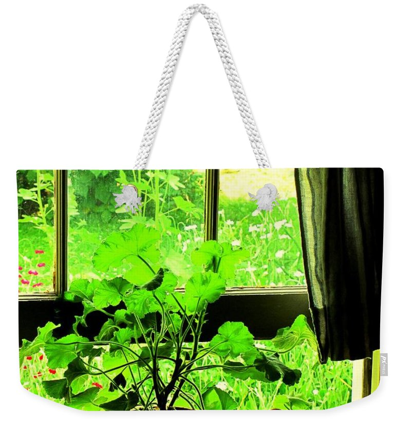 Pioneer Weekender Tote Bag featuring the photograph Window To The World by Ian MacDonald