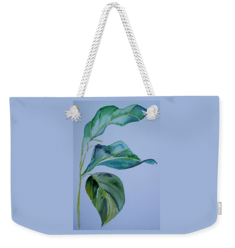 Nature Weekender Tote Bag featuring the painting Window View by Suzanne Udell Levinger