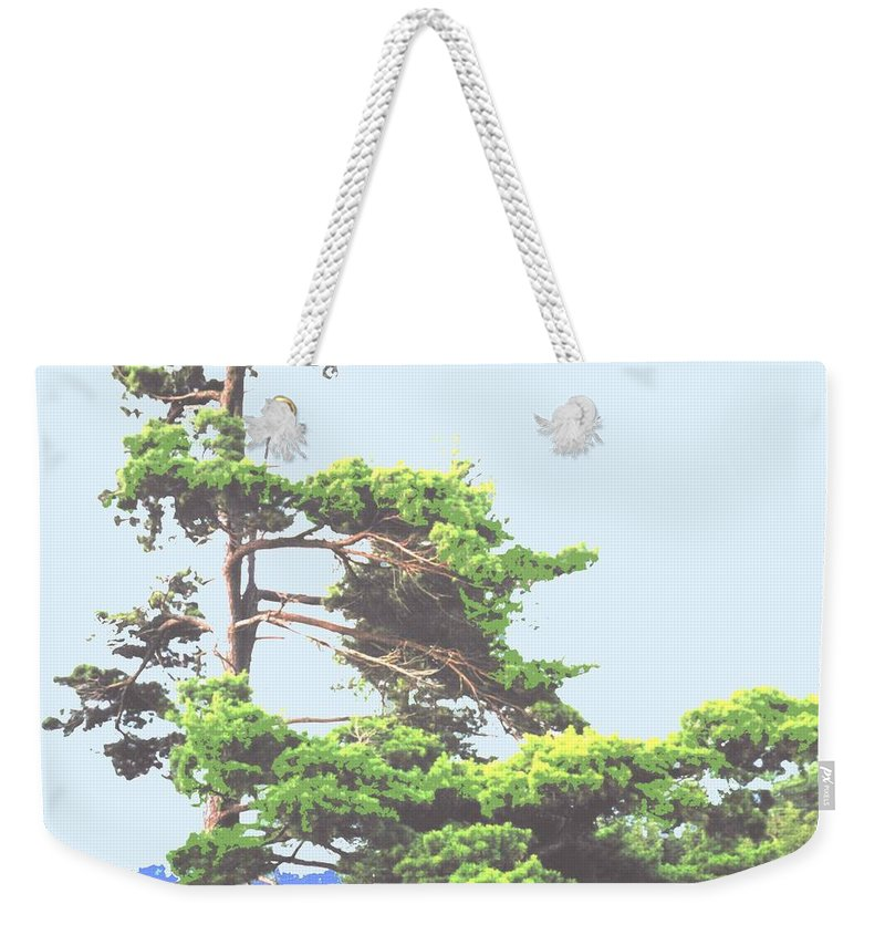 Pine Weekender Tote Bag featuring the photograph Windswept by Ian MacDonald