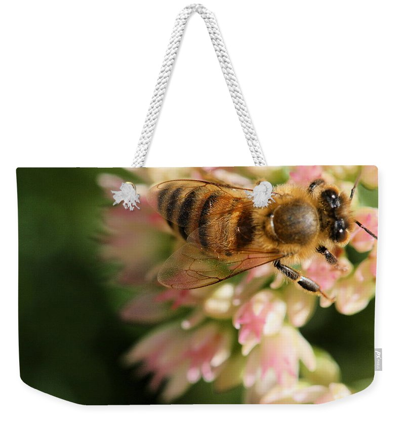 Bee Weekender Tote Bag featuring the photograph Wing And A Prayer by Angela Rath