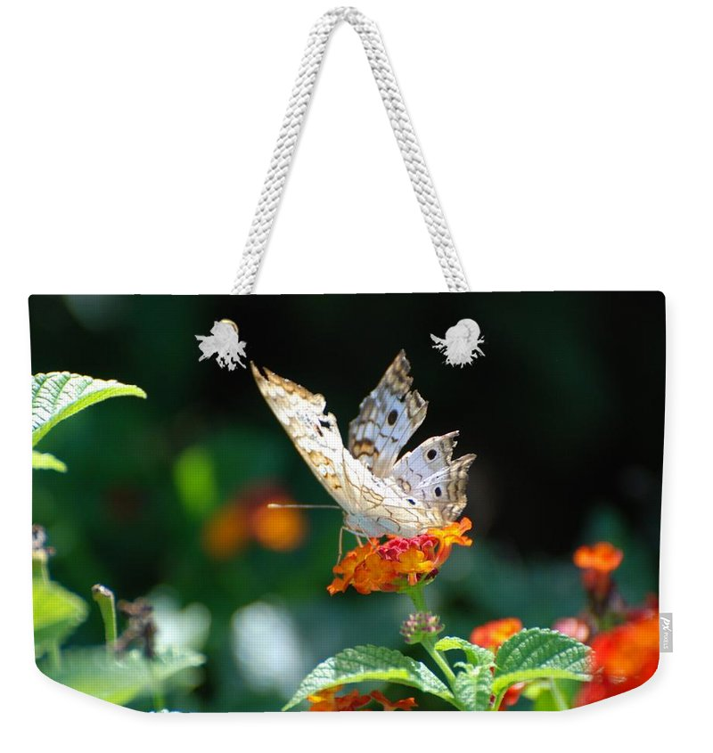 Butterfly Weekender Tote Bag featuring the photograph Winged Butter by Rob Hans