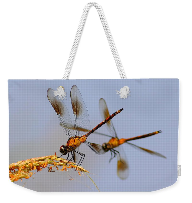 Animal Weekender Tote Bag featuring the photograph Wingman by Robert Frederick