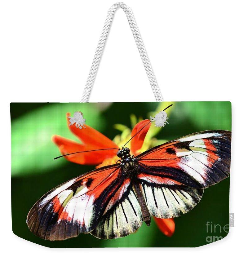 Wings Weekender Tote Bag featuring the photograph Wings 9 by Lisa Renee Ludlum