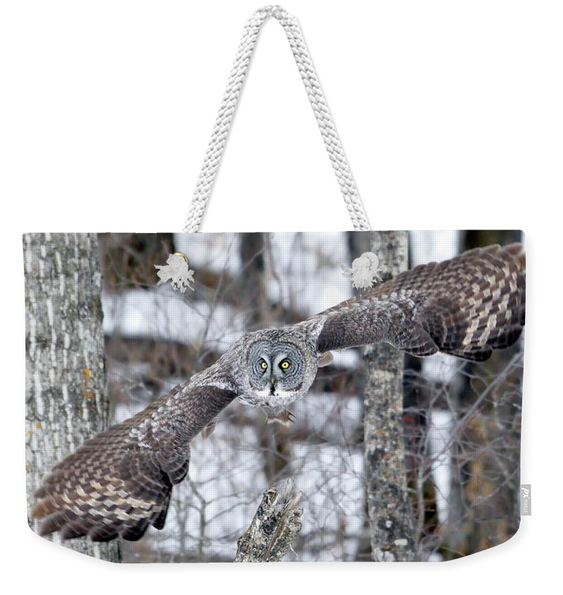 Nature Weekender Tote Bag featuring the photograph Wings Wide Open by Crystal Massop