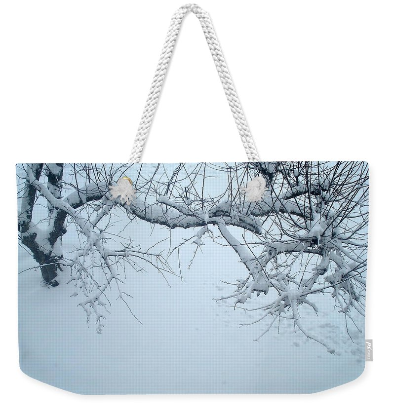 Nature Weekender Tote Bag featuring the photograph Frozen by Nelson F Martinez