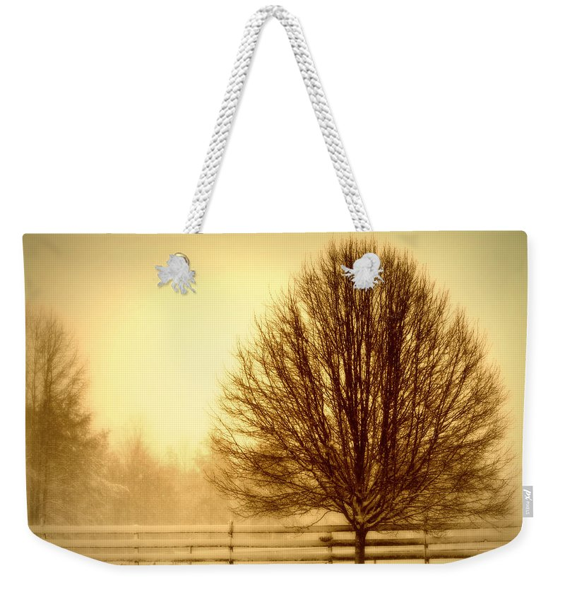 Winter Weekender Tote Bag featuring the photograph Winter Calm by Tina Meador