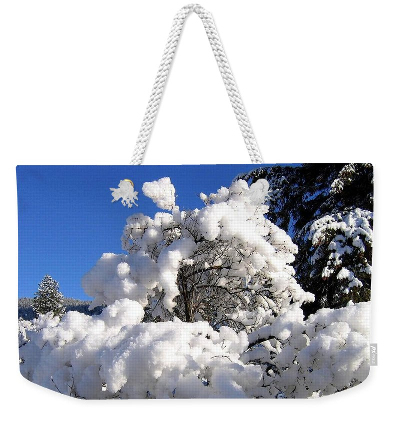 Winter Weekender Tote Bag featuring the photograph Winter Cotton by Will Borden