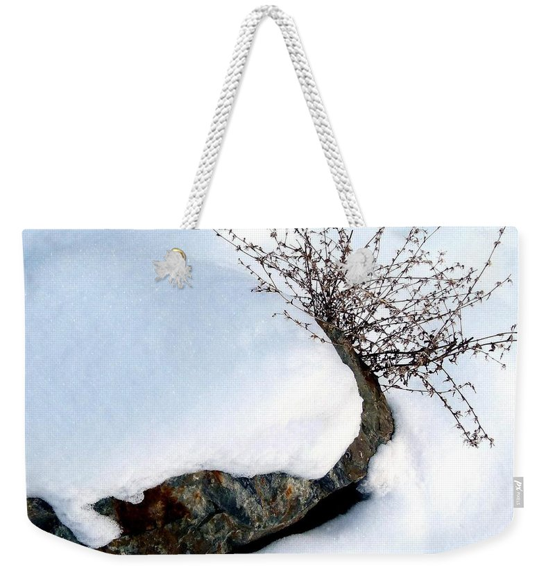 Winter Weekender Tote Bag featuring the photograph Winter Finery by Will Borden