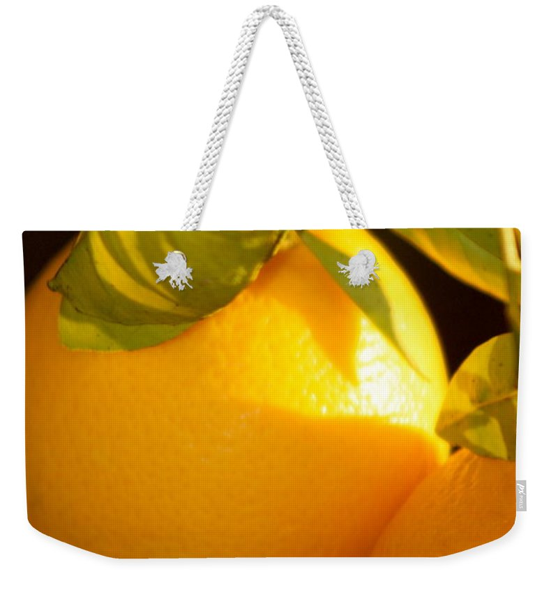 Fruit Weekender Tote Bag featuring the photograph Winter Fruit by Nadine Rippelmeyer