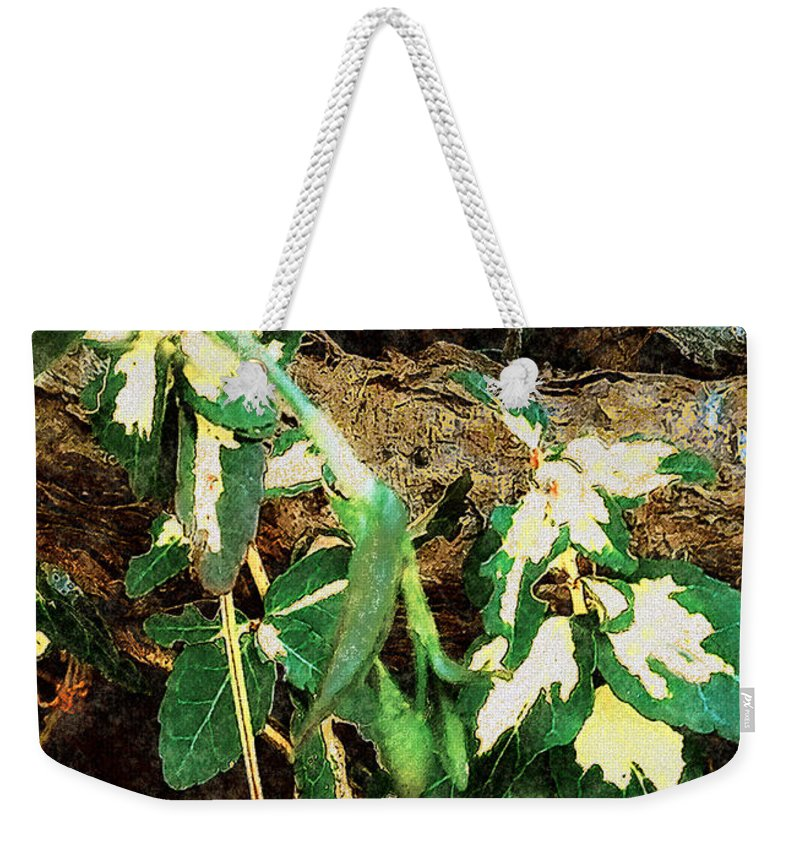 Autumn Weekender Tote Bag featuring the painting Winter Hideout by RC DeWinter
