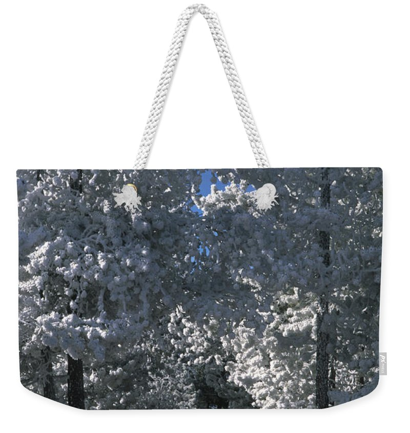 Yellowstone National Park Weekender Tote Bag featuring the photograph Winter Pathway by Sandra Bronstein