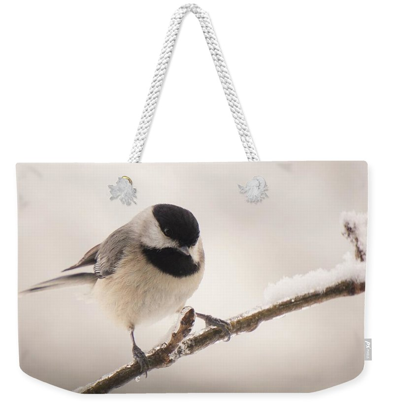 Chickadee Weekender Tote Bag featuring the photograph Winter Portrait by Karen Beasley