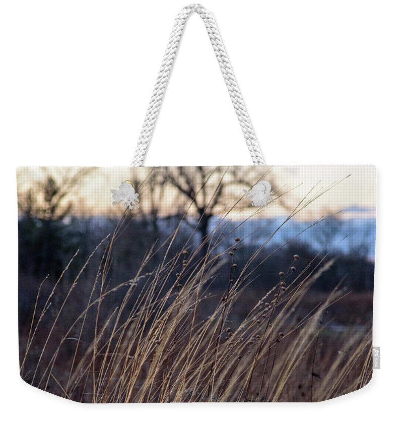 Tall Weekender Tote Bag featuring the photograph Winter Prairie Grass At Dusk by David Prahl