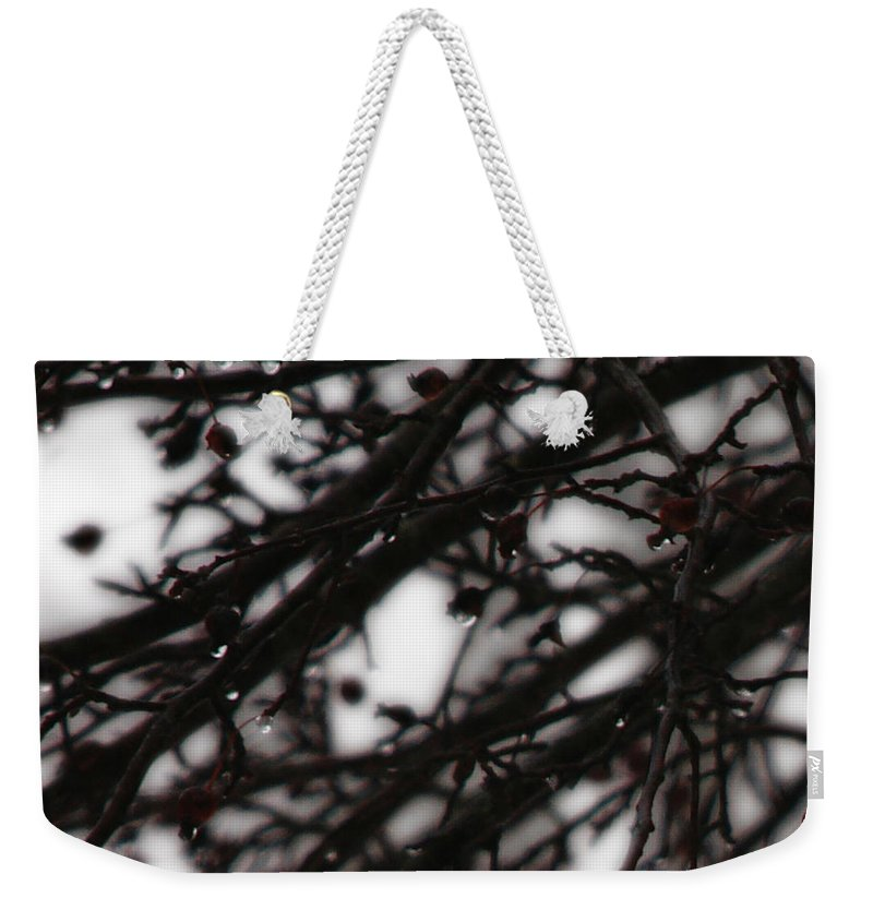 Branches Weekender Tote Bag featuring the photograph Winter Rain by Linda Shafer