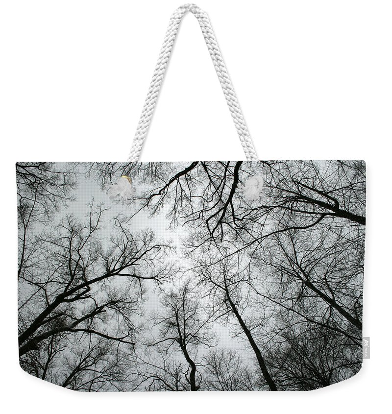 Winter Sky Tree Trees Grey Gloomy Peaceful Quite Calm Peace Cloudy Overcast Dark Weekender Tote Bag featuring the photograph Winter Sky by Andrei Shliakhau