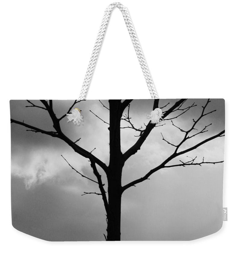 Winter Tree Weekender Tote Bag featuring the photograph Winter Tree by Carol Groenen