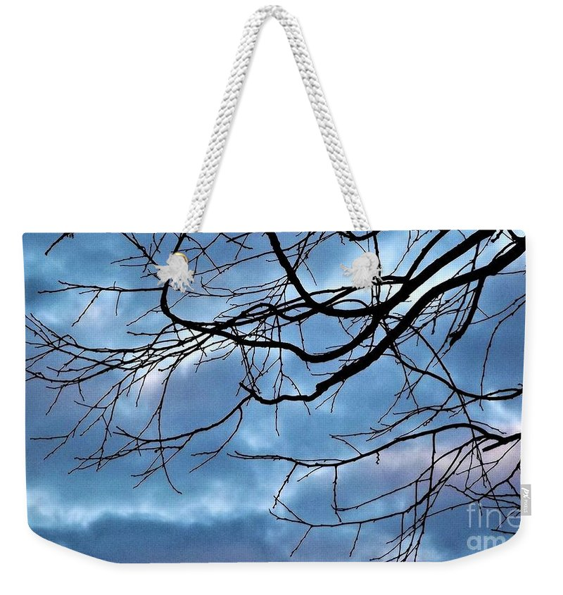 Sky Weekender Tote Bag featuring the photograph Winter Tree by Dee Winslow