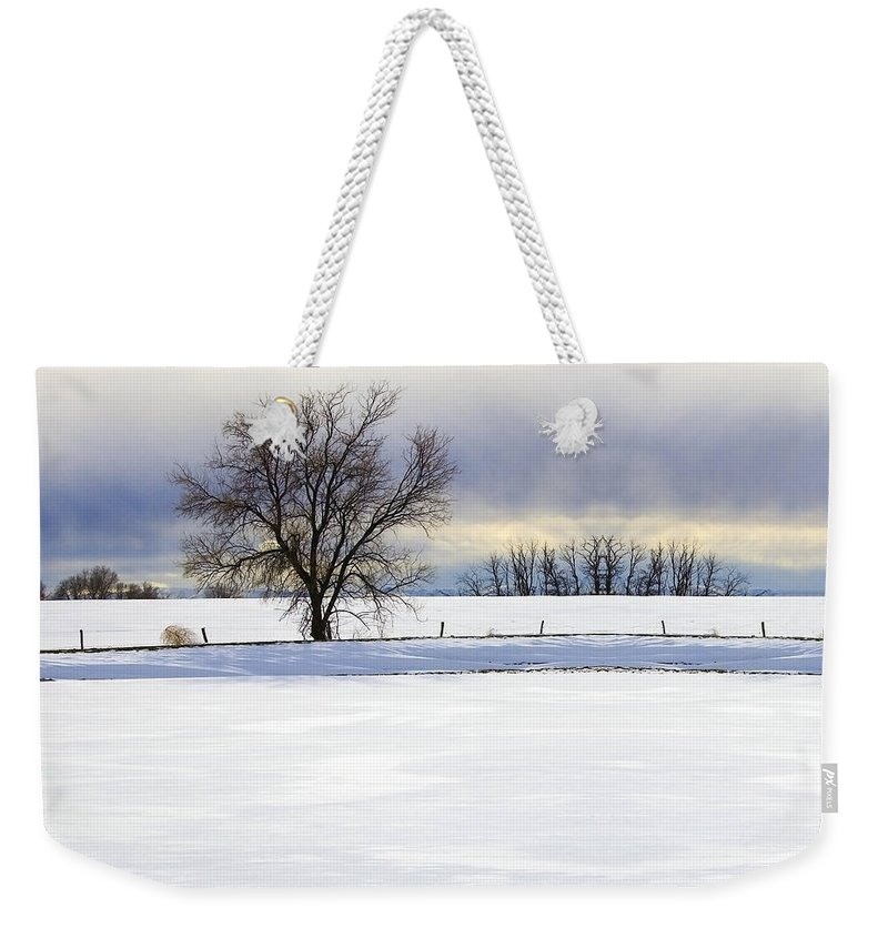 Photograph Weekender Tote Bag featuring the photograph Winter Tree by Munir Alawi