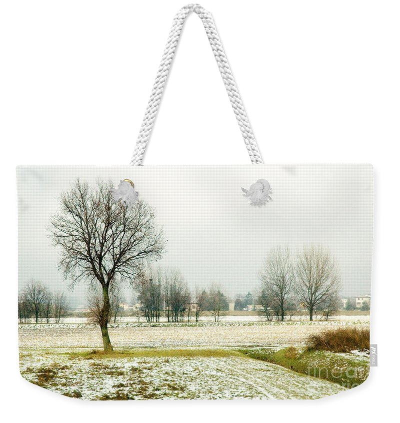 Bare Weekender Tote Bag featuring the photograph Winter Trees by Silvia Ganora